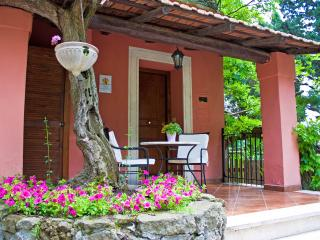 Charming and Romantic Cottage hill nearby Rome - Frascati vacation rentals