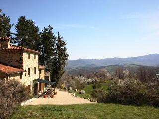 Tranquil farmhouse - stunning views & private pool - Anghiari vacation rentals
