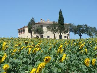 Villa Capezzine, La Limonaia - Monte San Savino vacation rentals