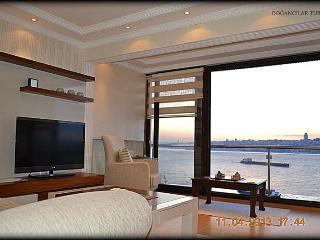 The Bosphorus Apartment - Istanbul vacation rentals