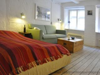 Magstræde - Absolute Center - 350 - Copenhagen Region vacation rentals