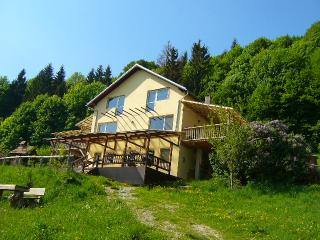 The house by the forest - Bran, Dracula's Castle - Bran vacation rentals