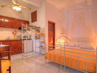 Studio Lefaki - Drosia vacation rentals