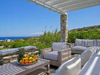 Modern stone façade villa Zefyros with lush sea view, helipad & beach access - Agios Georgios vacation rentals