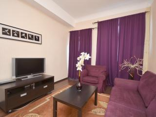 Deluxe 2-bedroom 1 block to Red Square-Kremlin! - Central Russia vacation rentals