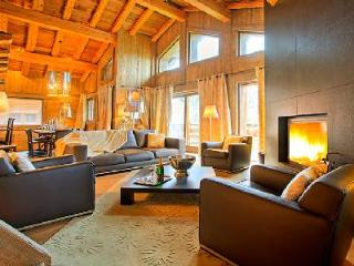 Chalet Tanniere with fireplace and heated plunge pool with Jetstream and Jacuzzi - Mont Saxonnex vacation rentals