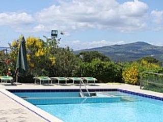 Villa Begonia - Image 1 - Montelupo Fiorentino - rentals