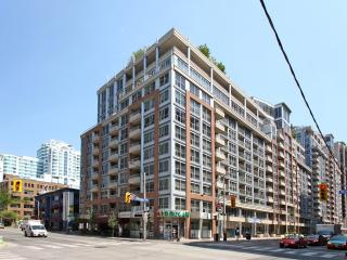 Downtown Toronto Furnished VACATION Rental - Toronto vacation rentals