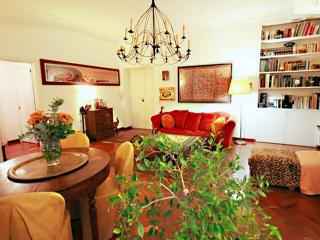 Flower Pentouse very close to Trastevere - Rome vacation rentals