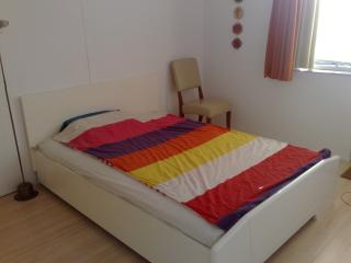 Apartment Sneek Center - Friesland vacation rentals