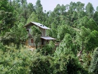 Frozen Woods - Tranquil Getaway at Mukteshwar - Mukteshwar vacation rentals