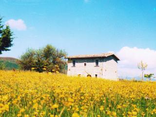 Casino Tonti Iarussi - Forli del Sannio vacation rentals