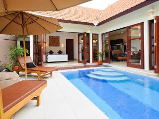 LUXURY, CENTRAL, PRIVATE 2 BDRM, 100 MTRS TO BEACH - Sanur vacation rentals