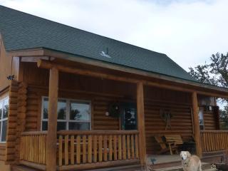 Watts Log Home Cabin - Fairplay vacation rentals