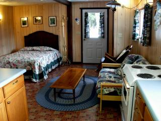 Wilderness Edge Cabin - Mount Rainier National Park vacation rentals