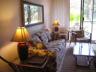Maui Vista.Free wifi/internet/long distance calls - Kihei vacation rentals