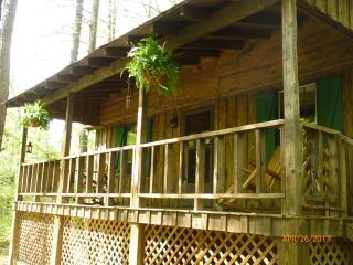 DRIFTWOOD *  Romantic, Riverside, Hot Tub Get Away - Marble Hill vacation rentals