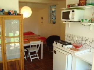 Cozy Studio & Garden - Metro Sumaré - Sao Caetano do Sul vacation rentals