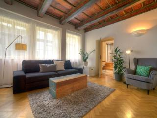 One-Bedroom Cozy Apartment - Nova Bystrice vacation rentals