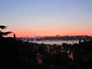 The Jewel of the Bosphorus - Istanbul vacation rentals