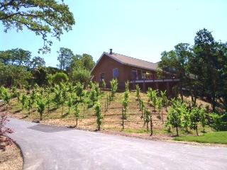 Hummingbird Ridge Estate - Middletown vacation rentals