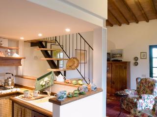 Casale Oliveta - Falco - Poggibonsi vacation rentals