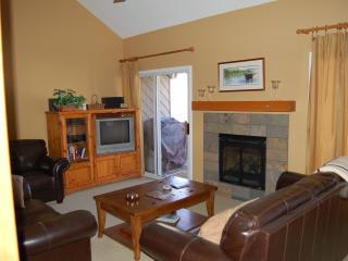 River Run Condo next to bike pth & 4 blocks to twn - Ketchum vacation rentals