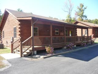 Wilderness Presidential 2 Bedroom Log Cabin - Spotsylvania vacation rentals