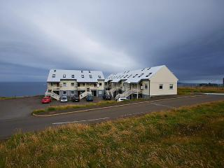 The Atlantic Swan - Streymoy vacation rentals