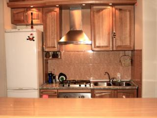 Apartment for rent in the center of Yerevan - Armenia vacation rentals