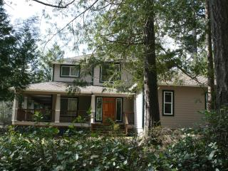 Hartstene Pointe home with Puget Sound view - Hoodsport vacation rentals