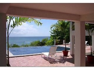 St. Lucia Villa, Oceanfront, Infinity Edge Pool, Exceptional View, Beach Access - Gros Islet vacation rentals