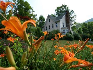 Modern Farmhouse in Catskill Park - Hunter vacation rentals