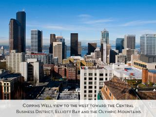 Coppins Well #1406 - Seattle vacation rentals