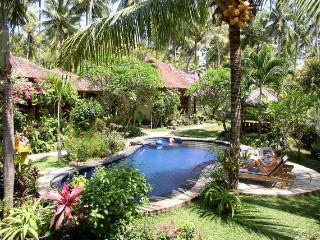 Saraswati Holiday House - Lovina vacation rentals