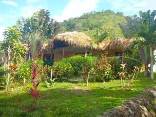 Private Studio Apartment within Jurassic Park - Las Terrenas vacation rentals