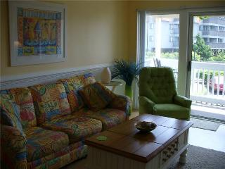 A Place At The Beach #158 - Atlantic Beach vacation rentals