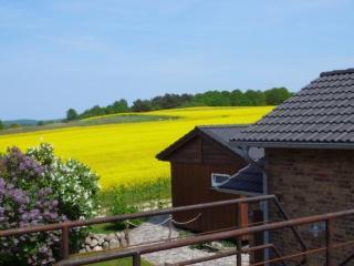Birdshouse Gobbin/Rügen Island Swan - Lancken-Granitz vacation rentals