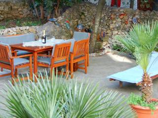Apartment   Luna - Southern Dalmatia vacation rentals