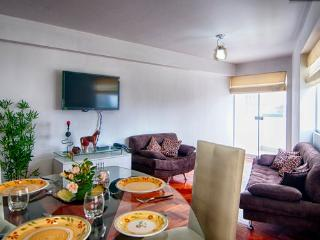 Ambroise nice & new apartment - Miraflores - Lima vacation rentals