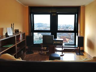 Nice flat to walk down the old town - Porto vacation rentals