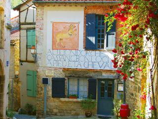 Medieval  historic 1600 old B&B - Midi-Pyrenees vacation rentals