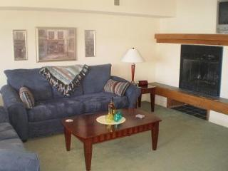 Big Boulder Lake Front Condo B-144 Midlake Dr. - Lake Harmony vacation rentals