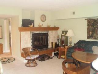 Big Boulder Lake Front Condo H-230 Midlake Dr. - Lake Harmony vacation rentals