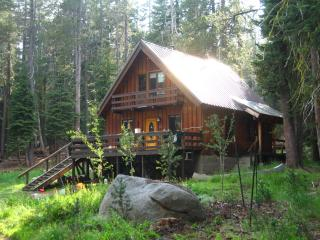 High Sierras Mountain Cabin on 5 Private Acres! - Bear Valley vacation rentals