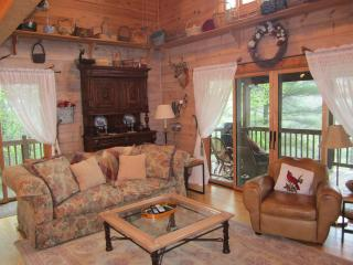 Pappy's Southern Comfort - Ellijay vacation rentals