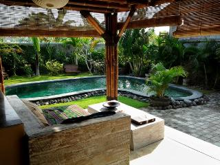 Wonderfull privat Villa in Best location - Seminyak vacation rentals