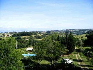 Villa with pool Sabine hills, complete  privacy ! - Ponzano Romano vacation rentals