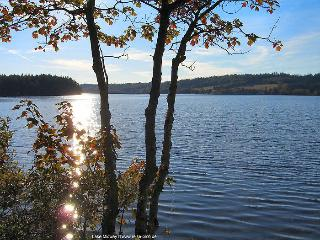 Lake Midway Cottage Digby Neck - Digby vacation rentals