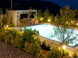Stone Villa -  Last minute Offers! (Pool & BBQ) - Siros vacation rentals